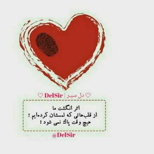 دل سیر  DelSir